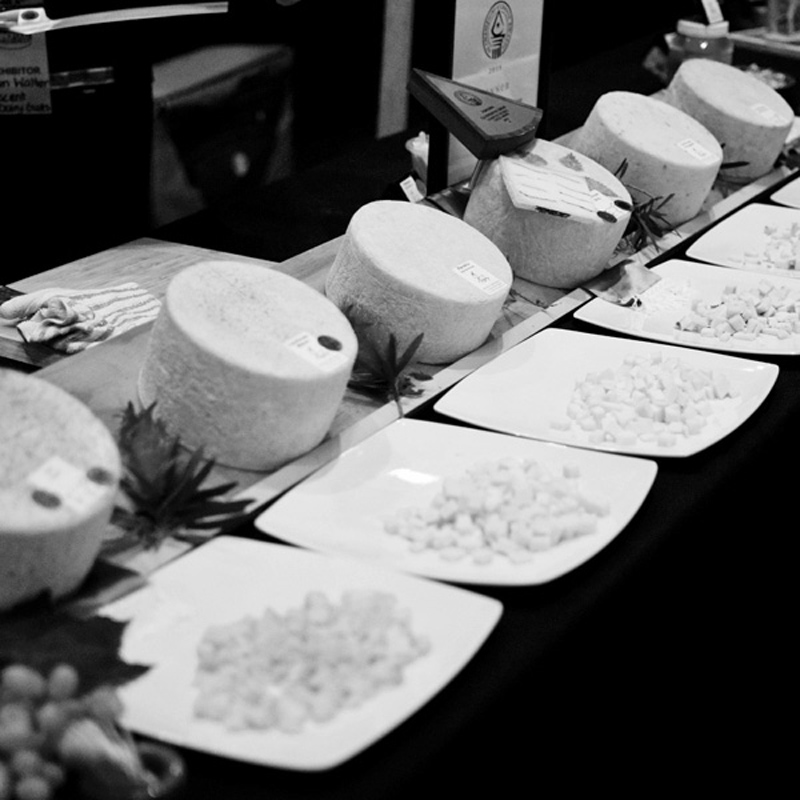 cheesefest002