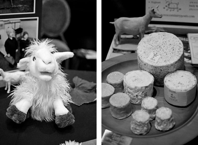 cheesefest015