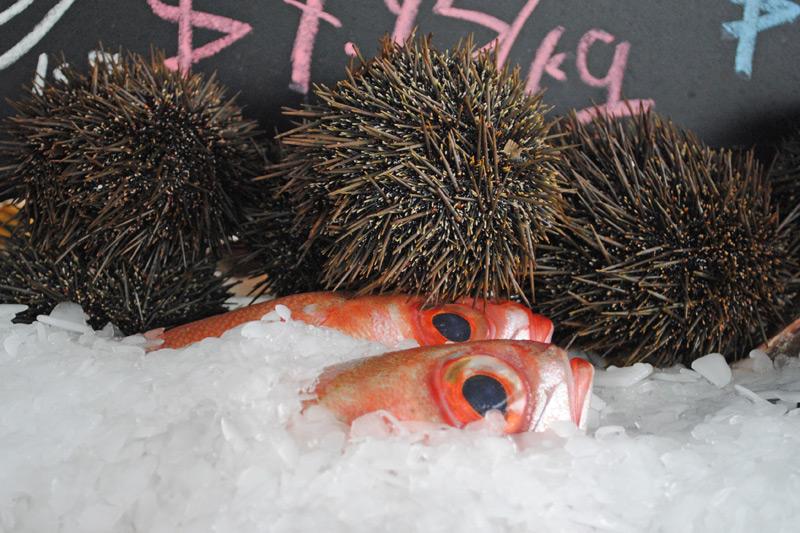 seafood-fest010
