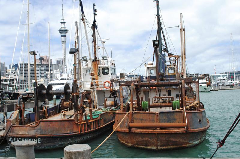 seafood-fest016
